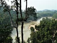 """De """"Tembeling River"""" bij Kuala Tahan in Taman Negara NP."""