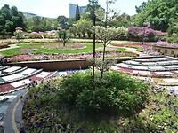De botanische tuin rondom het paleis van de Sultan.
