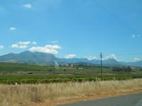 DSCN8175 - Stellenbosch Wijngaarden