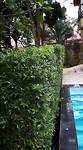 Genieten van het Zwembad