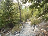 Frank slide trail 05