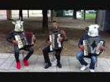 Drie vreemd uitgedoste, maar goed (samen)spelende muzikanten