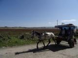 141017 reisverslag vervoer (1)