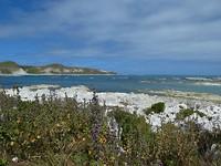 Uitzicht op de South Bay