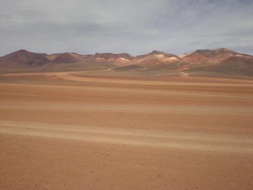 Kleurige woestijn