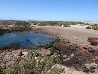 Punta Tombo 6