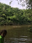 Zoë in de kano, Marcel, Merel, Peer zwemmen