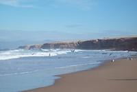 wilde_kustlijn