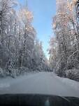 Trip Alaska