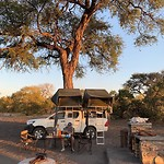 Moremi NP 6 (Third Bridge)