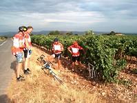 we rijden door het wijngebied Rioja