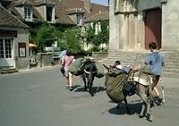 je bent een ezel als je niet fietst naar Santiago