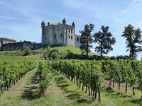 Chāteau Saint-Emilion met de wijngaarden