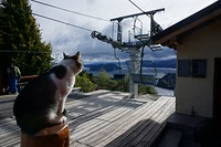 In de winter is Bariloche een skigebied