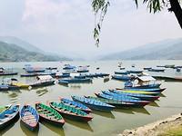 Kreeg geen genoeg van de prachtig gekleurde bootjes op het Phewa Lake