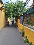 Little alleyways