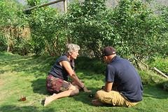 Tuin met zacht gras