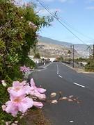 Op weg naar de hoofdstad Santa Cruz
