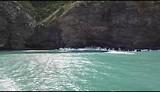 Akaroa harbour cruise