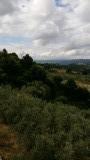 De heuvels van Val d'Elsa