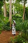 La Reine dans le forêt sacré