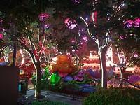Lichtjes in Xi an