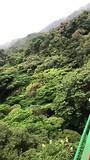 The Hangingbridges of Monteverde 🍀