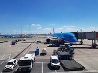 Het vliegtuig naar Delhi