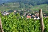 Een wijndorp