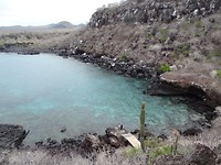 De snorkelplek waar we met de zeehond speelden