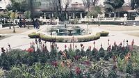 The Garden Of Dreams