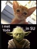 Ik denk dat hij Yoda is
