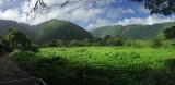 panorama met de waterval in de vallei
