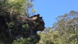 deze rots lijkt op een kattenhoofd