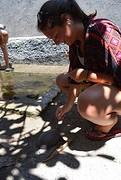feeding turtles