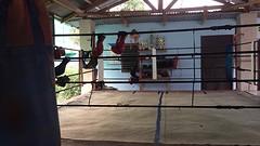boksing ring