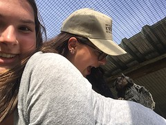 Monkey in my back