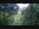 Ik vlieg ook over de Surinaamse rivier! Zalig hé ;)