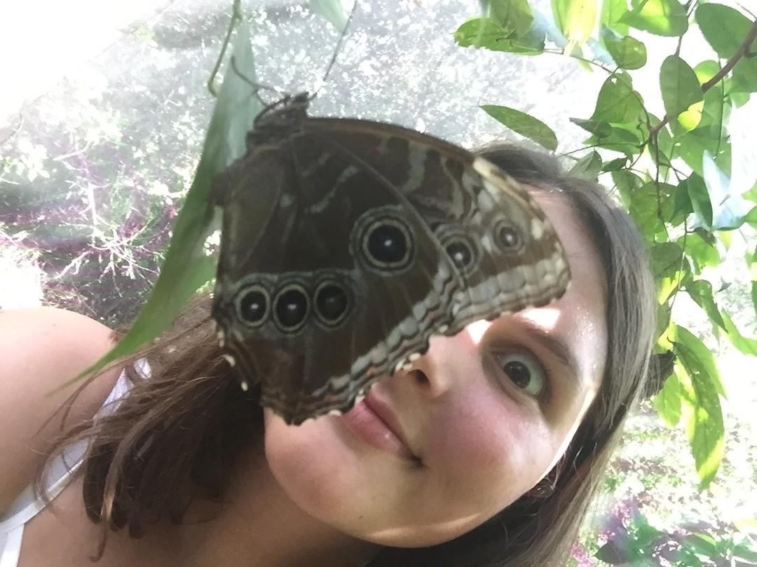 De vlinder en mijn ogen