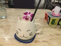 Milkshake drinken in kattencafe Phuket