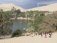 Oase in laguna chuacachina