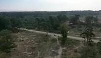 De Sallandse heuvelrug