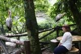Birdpark in KL