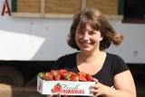 Lokale aardbeien langs de weg, lekker!