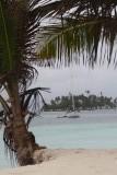 Delfin Solo vanaf het strand
