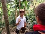 Uitleg over de plantage van deze kleine koffieboer met 1 hectare grond