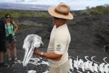 Franklin laat ons een dolfijnen schedel en walvis skelet (achtergrond) zien