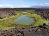 laguna midden in de lava