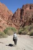 paardje rijden :)
