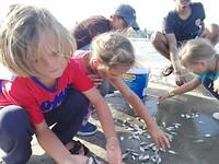 Vissers op de pier helpen